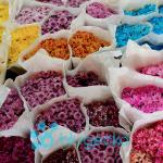 Pak Klong Talad Flower Market Bangkok